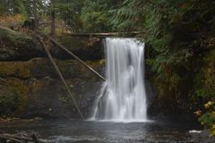 Water gently flows over the cliff: Upper North Falls at Silver Falls Park, OR royalty free stock photo
