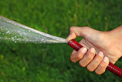 Water gevend gras stock afbeelding