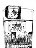 Water, Glass And Ice Cubes Royalty Free Stock Photography