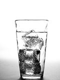 Water Glass with Ice Cubes Stock Image