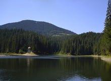 Water glazig bij meer stock fotografie