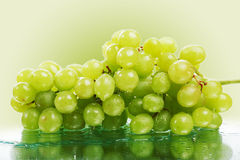 Water grape Stock Photography