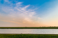Water, green field and birds Royalty Free Stock Images