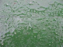 Water, Green, Leaf, Drop stock images