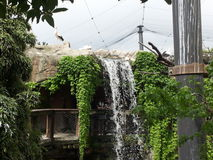 Water and green in the park. Water Fall in a park, Lombardy Royalty Free Stock Photos