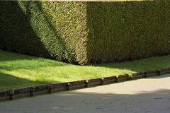 Water and hedge security Stock Images