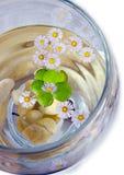 Water herbal Stock Photo