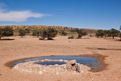 Water hole for animals in the desert Stock Photos