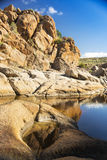 Water Hole Royalty Free Stock Photography