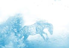 Water horse vector illustration