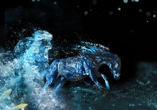 Water horse. Artwork of liquid horse jumps and runs in water Stock Image