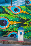 Water hose and blue green peacock feathers graffiti. San Francisco April 2015 Stock Images