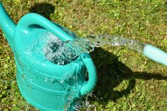 The water hose flows from the garden hose into the watering can. Wasteful wasting water. The water hose flows from the garden hose into the watering can Stock Photography