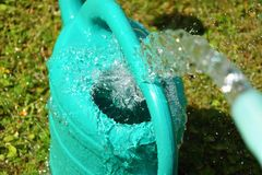 The water hose flows from the garden hose into the watering can. Wasteful wasting water. The water hose flows from the garden hose into the watering can Stock Images