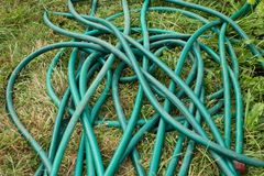 Water hose lying on the grass in the garden. Green water hose lying in the garden stock photo