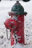 Water hydrant. Painted Water hydrant in snow Stock Photography