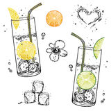 Water, ice cubes Royalty Free Stock Images