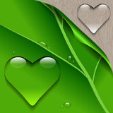 Water icons. Clear drop icon in the shape of heart, EPS 10 Royalty Free Stock Image