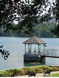 Water Intake Tower at MacRitchie Reservoir Royalty Free Stock Photos