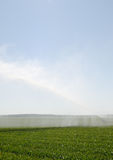 Water irrigation on field Flevoland Stock Images