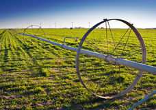 Water irrigation in a rural green field Stock Photography