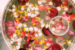 Water with jasmine and roses corolla. In bowl for Songkran festival in Thailand Royalty Free Stock Photo
