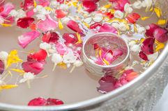 Water with jasmine and roses corolla. In bowl for Songkran festival in Thailand Royalty Free Stock Image