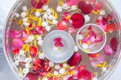Water with jasmine and roses corolla. In bowl for Songkran festival in Thailand Stock Photos