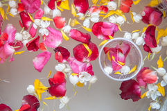 Water with jasmine and roses corolla. In bowl for Songkran festival in Thailand Stock Image