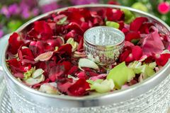 Water with jasmine and roses corolla in bowl for Songkran festival. In Thailand Royalty Free Stock Photography