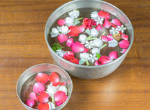 Water with jasmine and roses corolla in bowl Royalty Free Stock Image