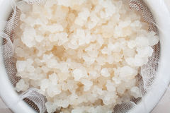 Water kefir grains Royalty Free Stock Images