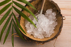Water kefir grains Royalty Free Stock Photo
