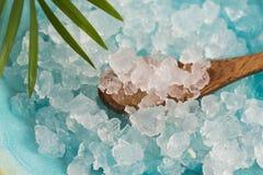 Water kefir grains Stock Photography