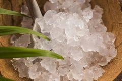 Water kefir grains Stock Photos