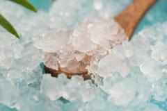 Water kefir grains Stock Image