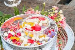 Water in kom met parfum en bloemen wordt gemengd die Stock Afbeelding