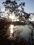 Water lake behind trees in autumn Stock Photo