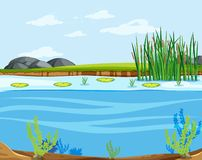 A water lake scene royalty free illustration