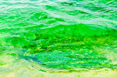 Water landscape royalty free stock photos