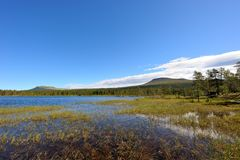 Water landscape in sweden. A lake in the nipfjället nature reservat in sweden Royalty Free Stock Photo