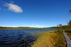 Water landscape in sweden. Waterlandscape in the nipfjället nature reservat in sweden Royalty Free Stock Images