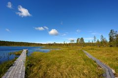 Water landscape in sweden. Waterlandscape in the nipfjället nature reservate in sweden Stock Image