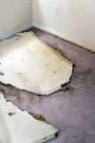 Water leaking damaged plasterboard and carpet Stock Image