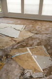 Water leaking damaged plasterboard and carpet Stock Photos