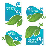 Water and leaves stickers Royalty Free Stock Image