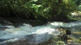Water leeglopende rotsen bij hoge snelheid, kleine geneigde waterval stock video