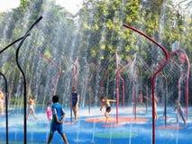 Water, Leisure, Fun, Tree