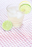 Water with lemon and lime Royalty Free Stock Photography