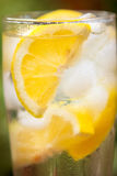 Water with  lemon and lot of ice Royalty Free Stock Images